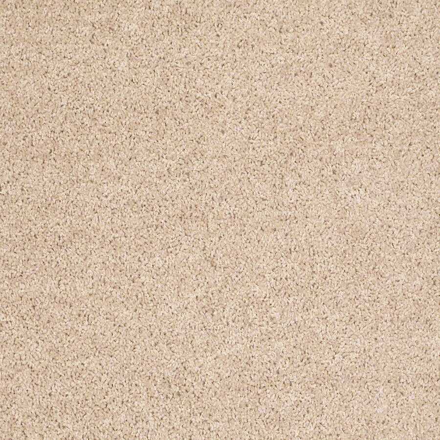 Shaw Batter Up I 15-ft W x Cut-to-Length Crumpet Textured Interior Carpet