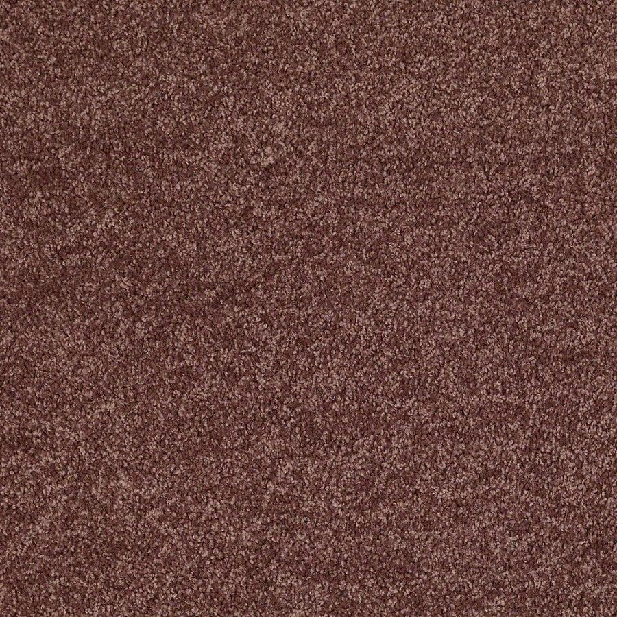 Shaw Batter Up I 15-ft W x Cut-to-Length Flower Pot Textured Interior Carpet