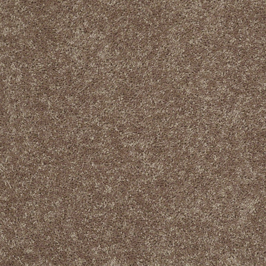 Shaw Batter Up I 15-ft W x Cut-to-Length Granola Textured Interior Carpet