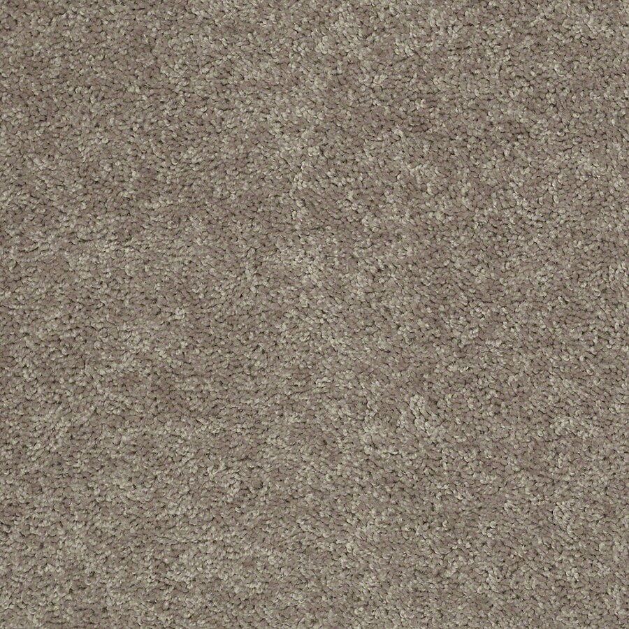 Shaw Batter Up I 15-ft W x Cut-to-Length River Slate Textured Interior Carpet