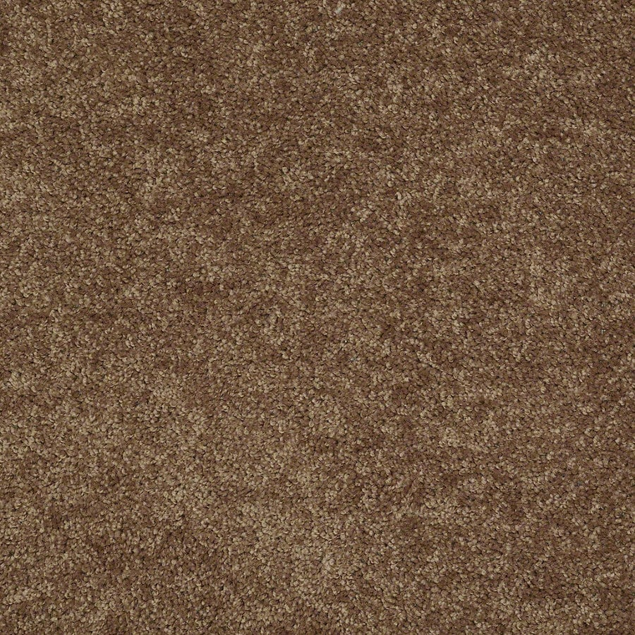 Shaw Batter Up I Desert Sunrise Textured Interior Carpet
