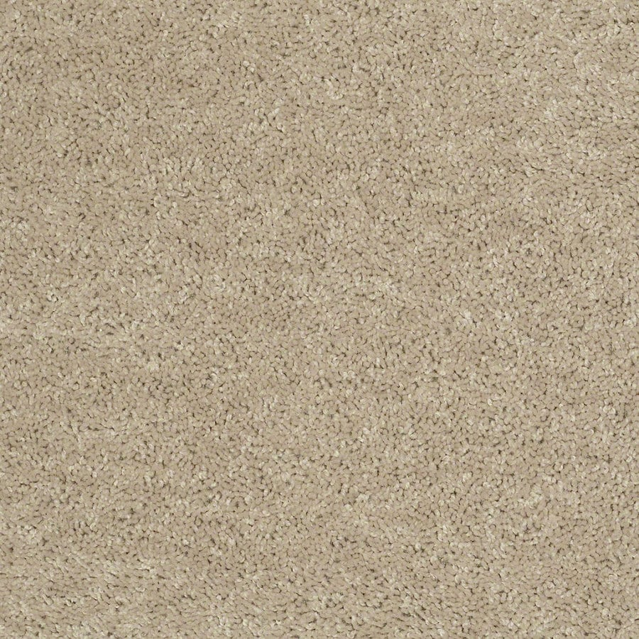 Shaw Batter Up II 12-ft W Flax Seed Textured Interior Carpet