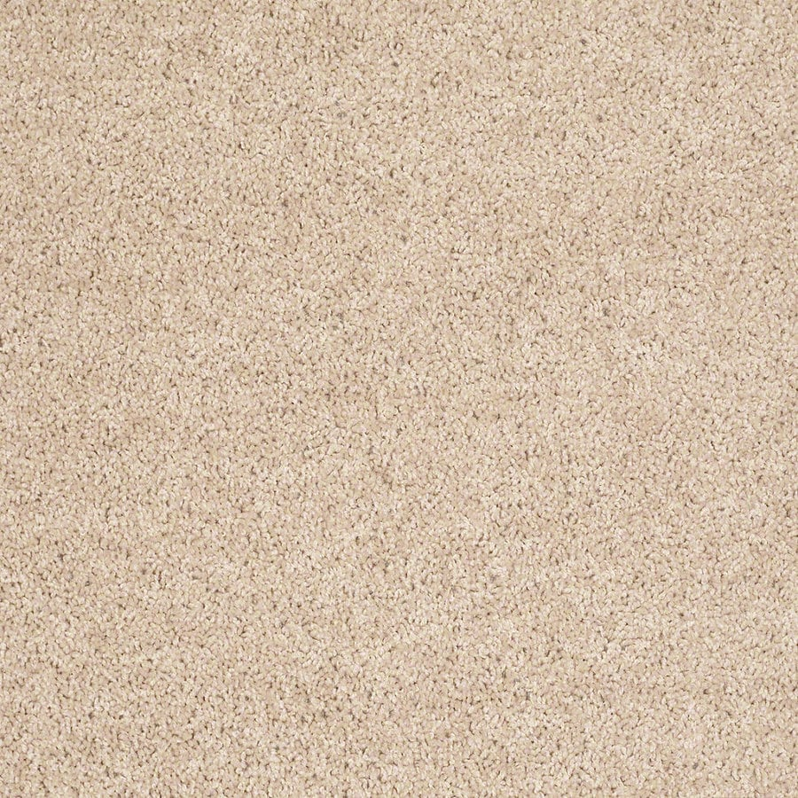 Shaw Cornerstone Crumpet Indoor Carpet