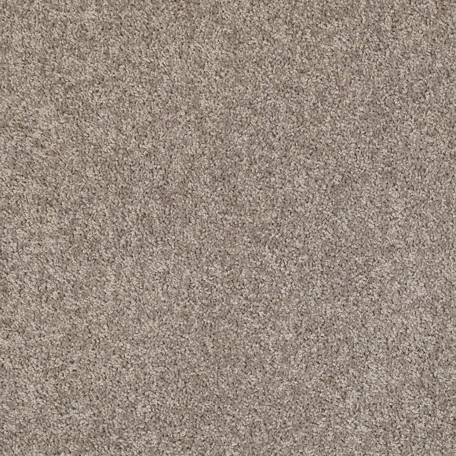 Shaw Batter Up II Aloe Textured Interior Carpet