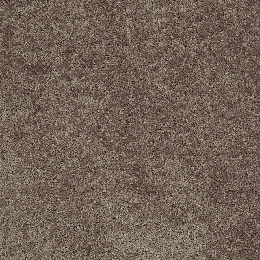 Shaw Batter Up II 12-ft W x Cut-to-Length Cattail Textured Interior Carpet