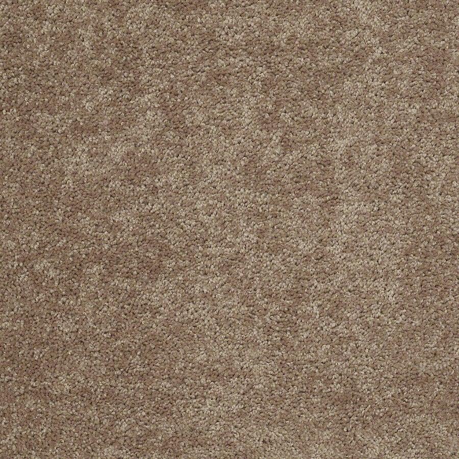 Shaw Batter Up II 12-ft W x Cut-to-Length Taffy Textured Interior Carpet