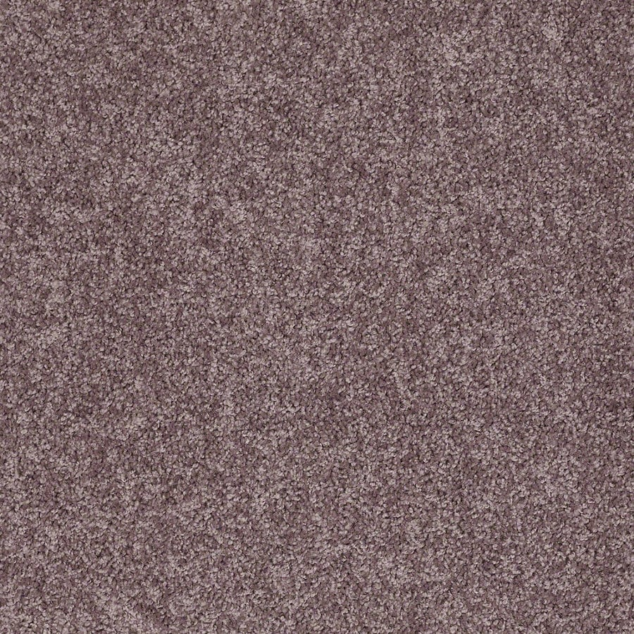 Shaw Cornerstone Batter Up II 12-ft W x Cut-to-Length Molasses Textured Interior Carpet