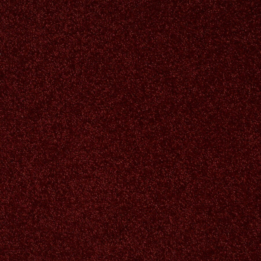 Shaw Batter Up II 12-ft W x Cut-to-Length Red Wine Textured Interior Carpet