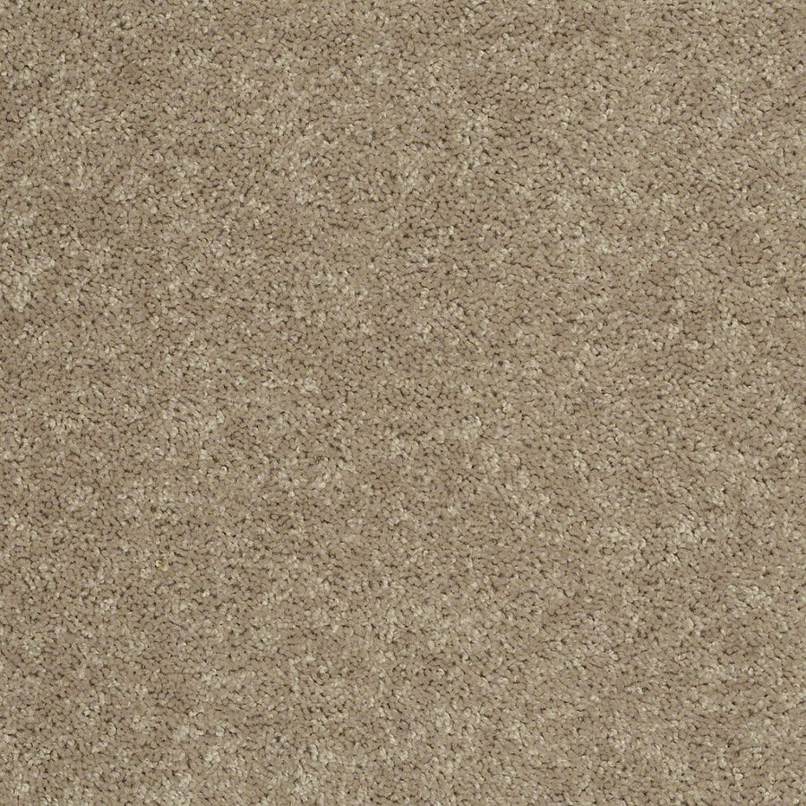 Shaw Batter Up II Tassel Textured Interior Carpet