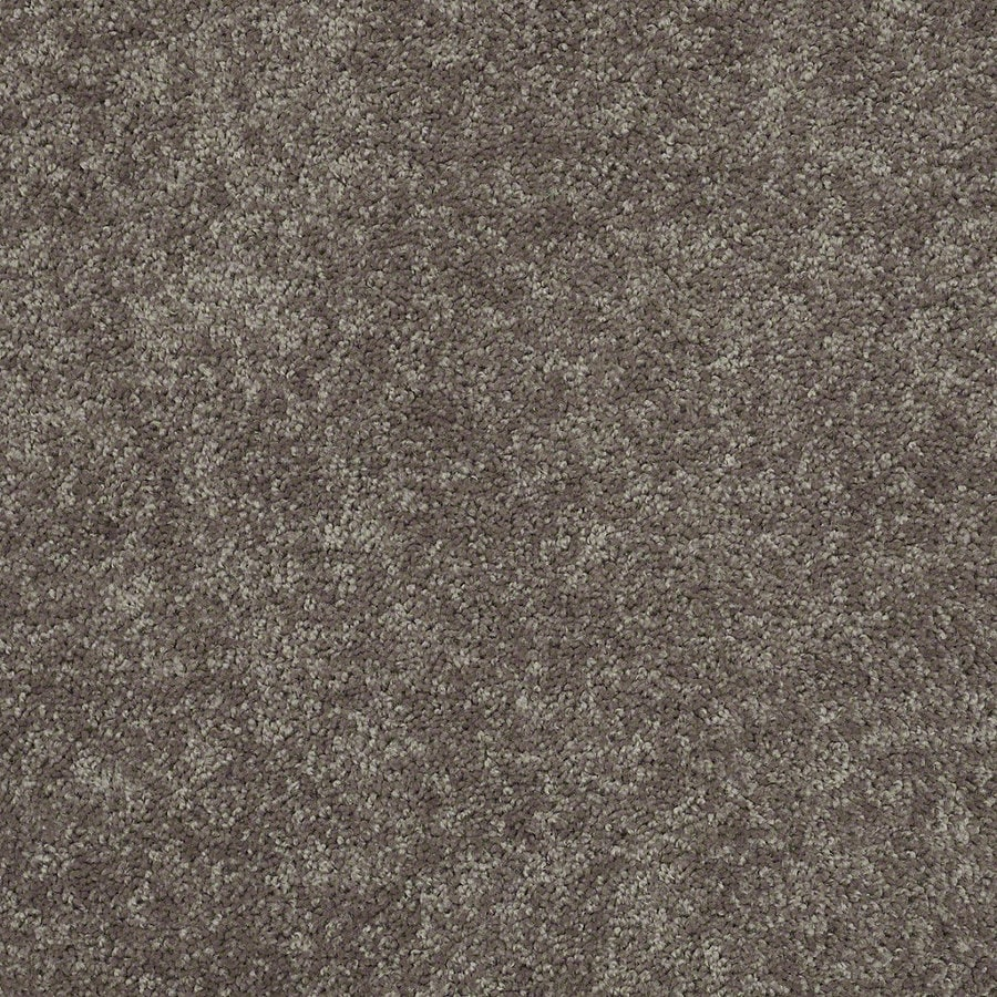 Shaw Batter Up II 15-ft W x Cut-to-Length Driftwood Textured Interior Carpet