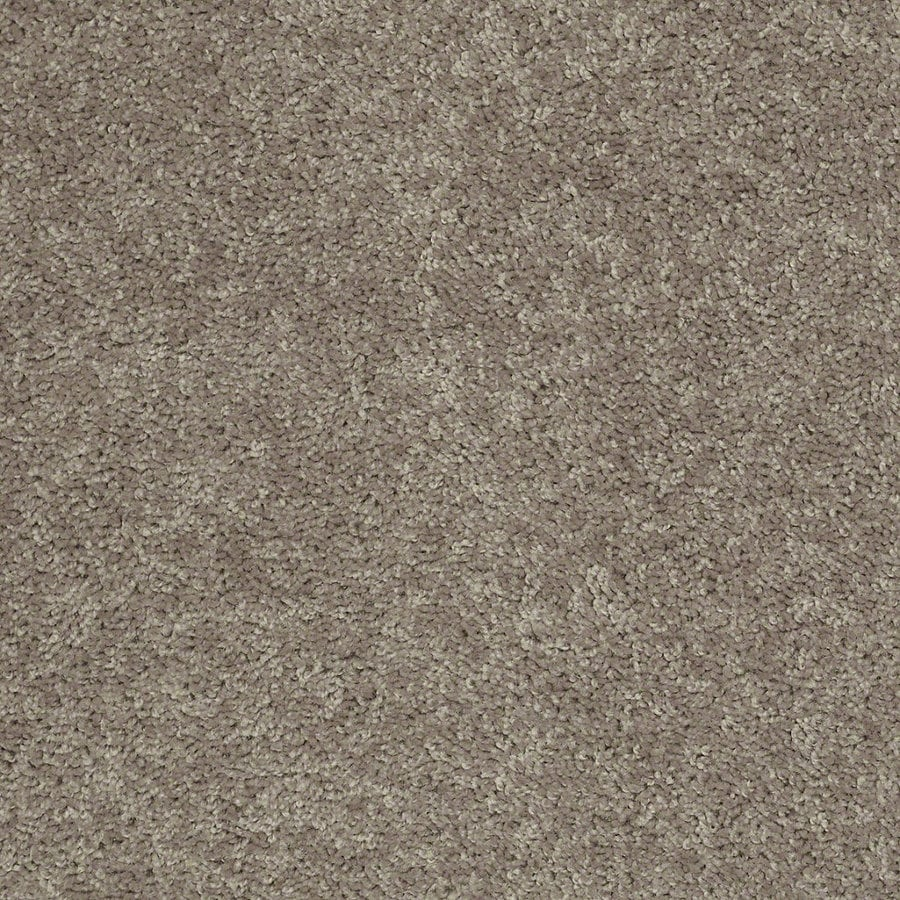 Shaw Batter Up II 15-ft W x Cut-to-Length River Slate Textured Interior Carpet