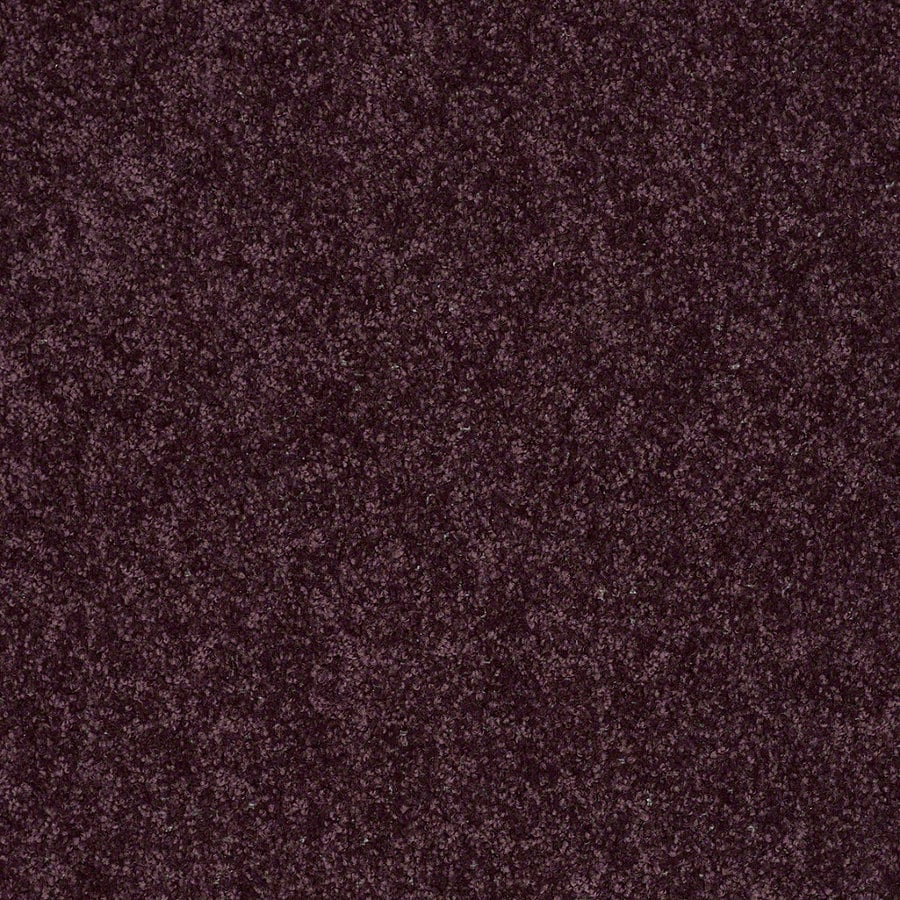 Shaw Batter Up II Royal Purple Textured Interior Carpet