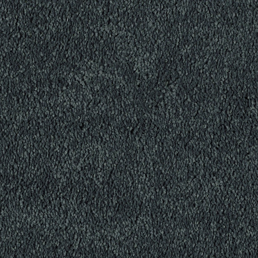 Shaw Essentials Soft and Cozy I S 12-ft W x Cut-to-Length Midnight Shade Textured Interior Carpet