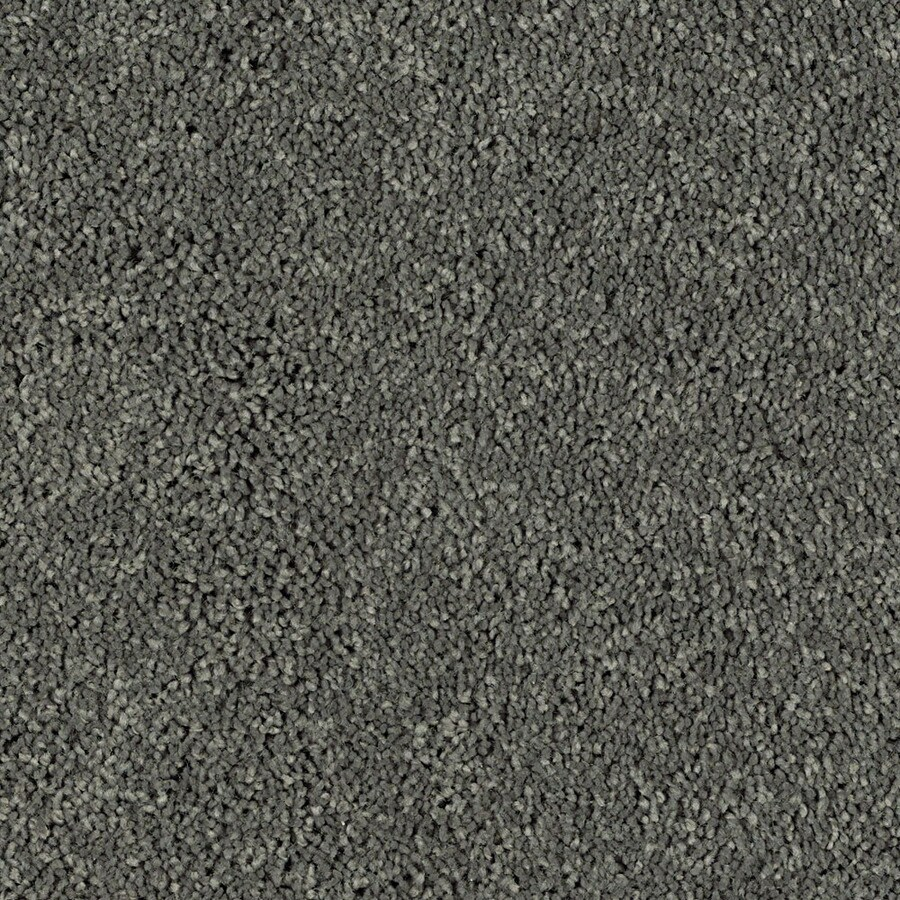 Shaw Essentials Soft and Cozy I S 12-ft W x Cut-to-Length Charcoals Textured Interior Carpet