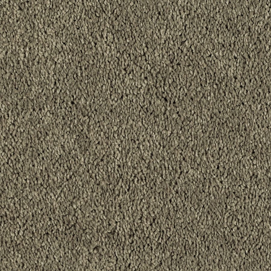Shaw Essentials Soft and Cozy I S 12-ft W x Cut-to-Length Tall Mocha Textured Interior Carpet