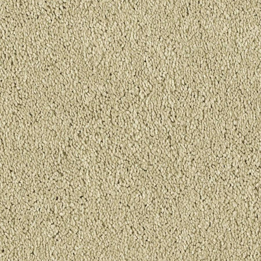 Shaw Essentials Soft and Cozy II S 12-ft W x Cut-to-Length Star Shine Textured Interior Carpet