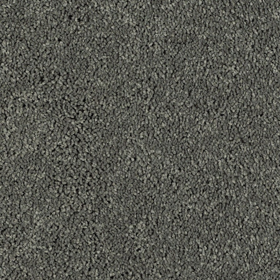Shaw Essentials Soft and Cozy II S 12-ft W x Cut-to-Length Charcoals Textured Interior Carpet