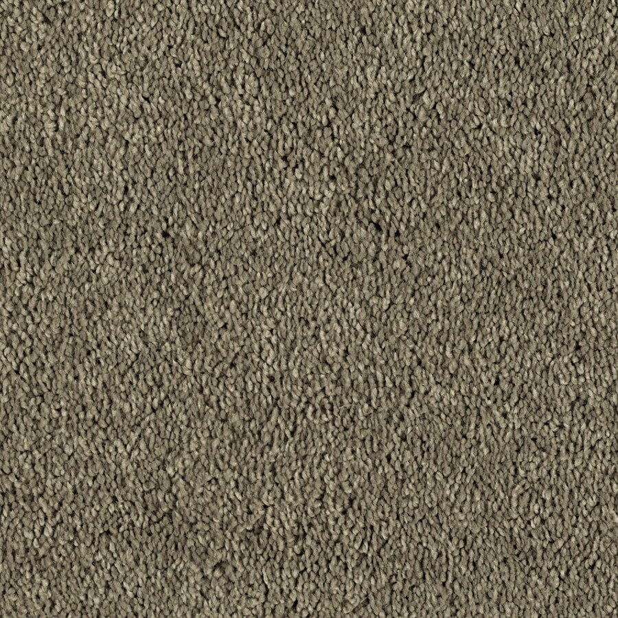 Shaw Essentials Soft and Cozy II S 12-ft W x Cut-to-Length Tall Mocha Textured Interior Carpet
