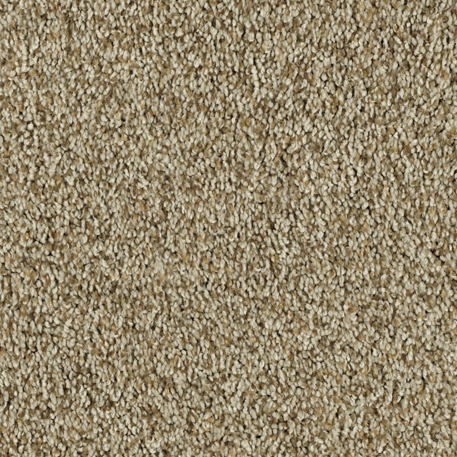 Shaw Essentials Soft and Cozy II- T 12-ft W Butter Textured Interior Carpet