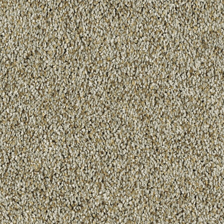 Shaw Essentials Soft and Cozy II- T 12-ft W Stainless Textured Interior Carpet