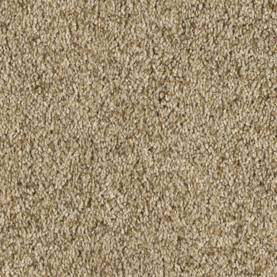 Shaw Essentials Soft and Cozy II- T 12-ft W Wood Beam Textured Interior Carpet