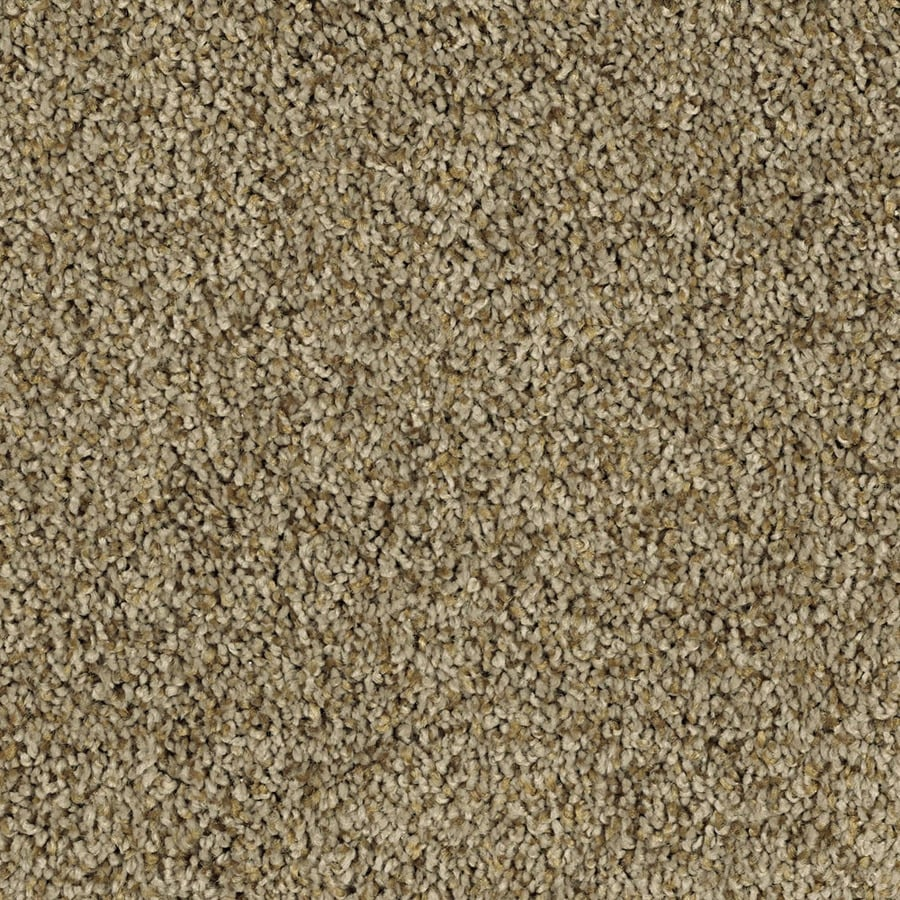 Shaw Essentials Soft and Cozy II- T 12-ft W Ridge Textured Interior Carpet