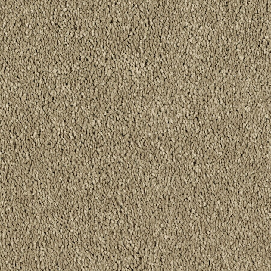 Shaw Essentials Soft and Cozy III S 12-ft W x Cut-to-Length True Tan Textured Interior Carpet