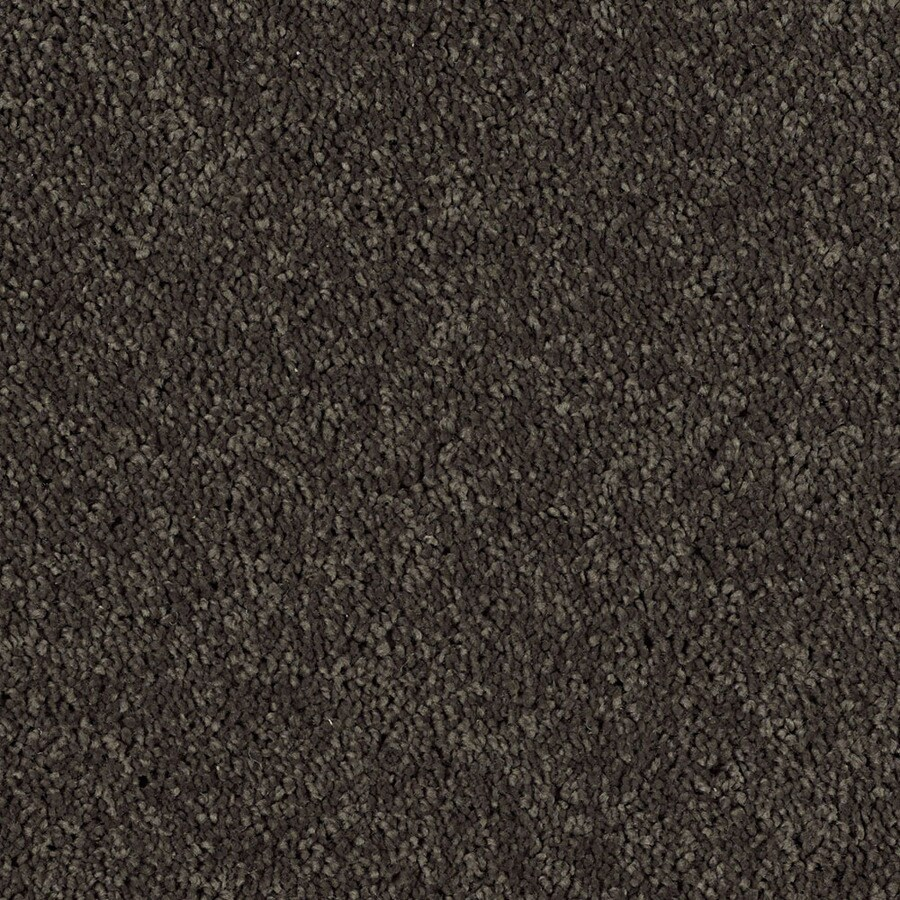 Shaw Essentials Soft and Cozy III S 12-ft W x Cut-to-Length Potting Soil Textured Interior Carpet