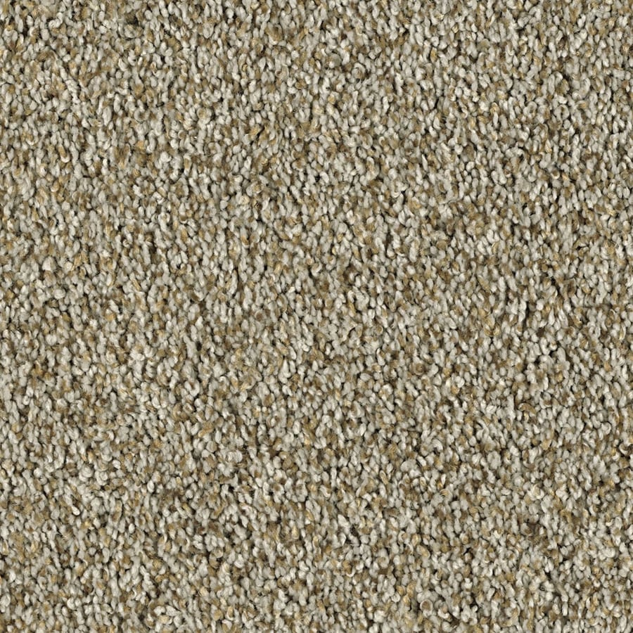 Shaw Essentials Soft and Cozy III (T) 12-ft W Pebble Path Textured Interior Carpet
