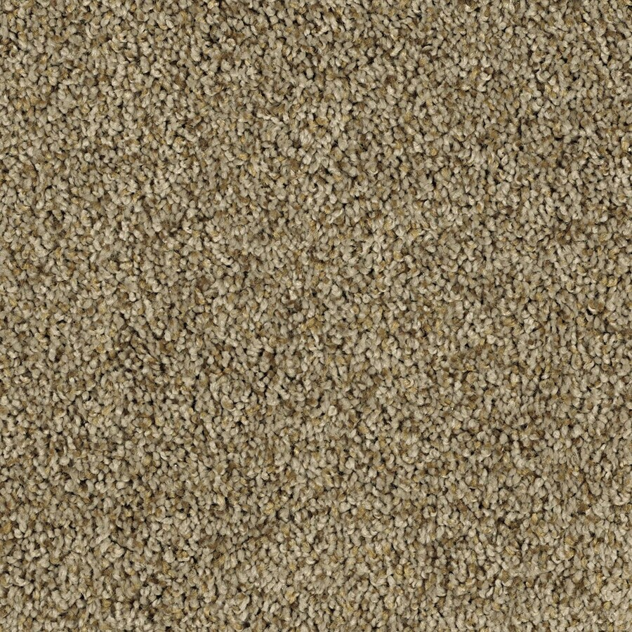 Shaw Essentials Soft and Cozy III (T) 12-ft W Ridge Textured Interior Carpet