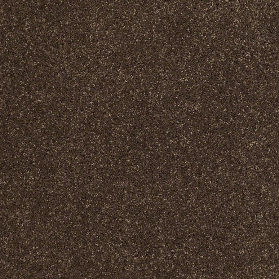 STAINMASTER TruSoft Luscious IV (S) Dark Chocolate Textured Indoor Carpet