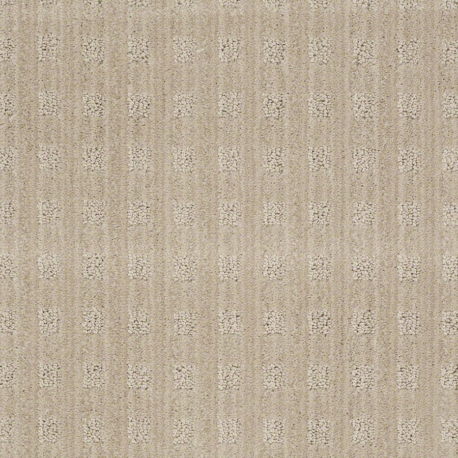 STAINMASTER Active Family Apricot Lane Birch Berber/Loop Interior Carpet