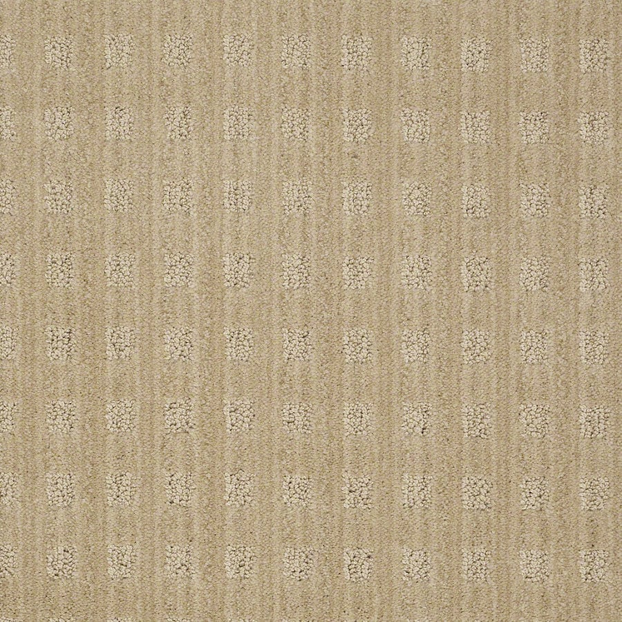 STAINMASTER Active Family Apricot Lane 12-ft W Supernova Berber/Loop Interior Carpet