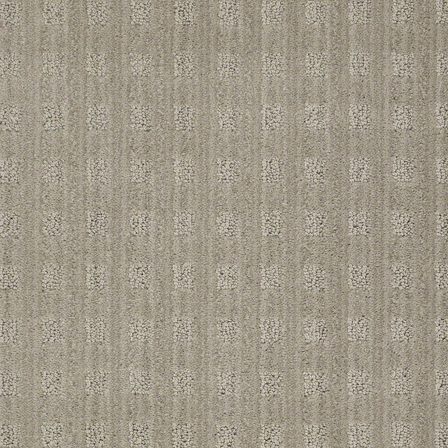 STAINMASTER Active Family Apricot Lane Fossil Berber/Loop Interior Carpet