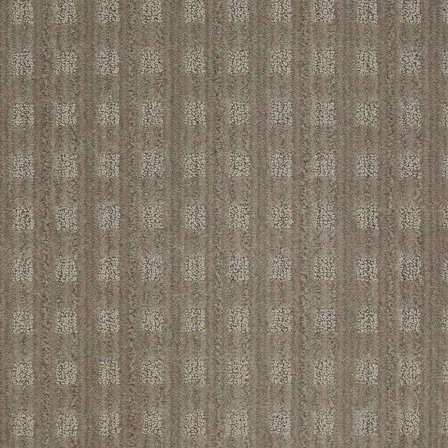 STAINMASTER Active Family Apricot Lane Foggy Day Berber/Loop Interior Carpet