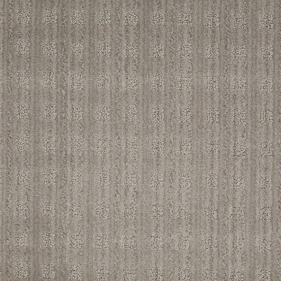 STAINMASTER Active Family Apricot Lane Cityscape Berber/Loop Interior Carpet