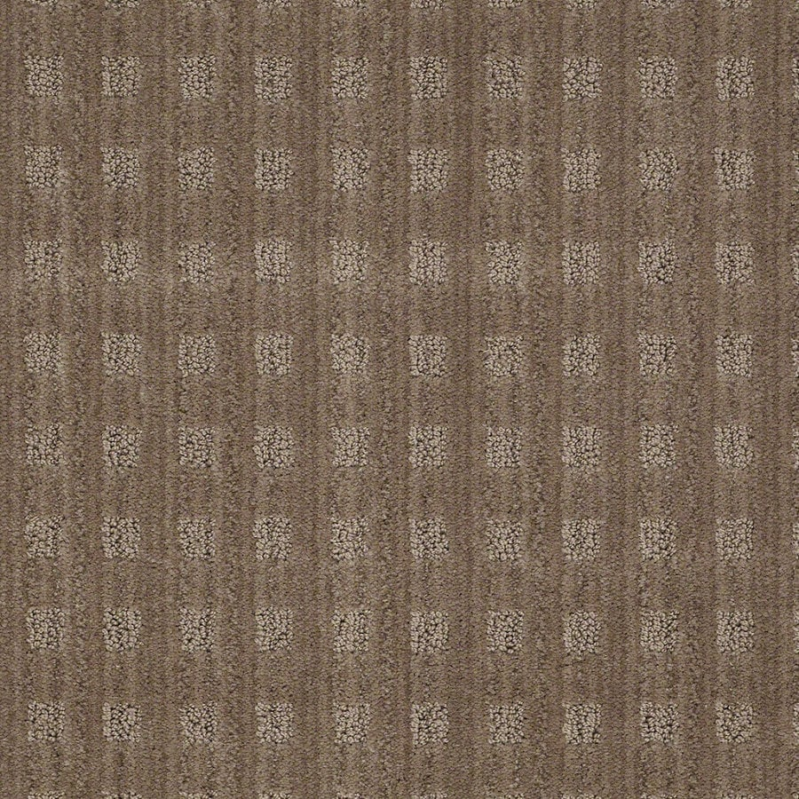 STAINMASTER Active Family Apricot Lane Mocha Blast Berber/Loop Interior Carpet