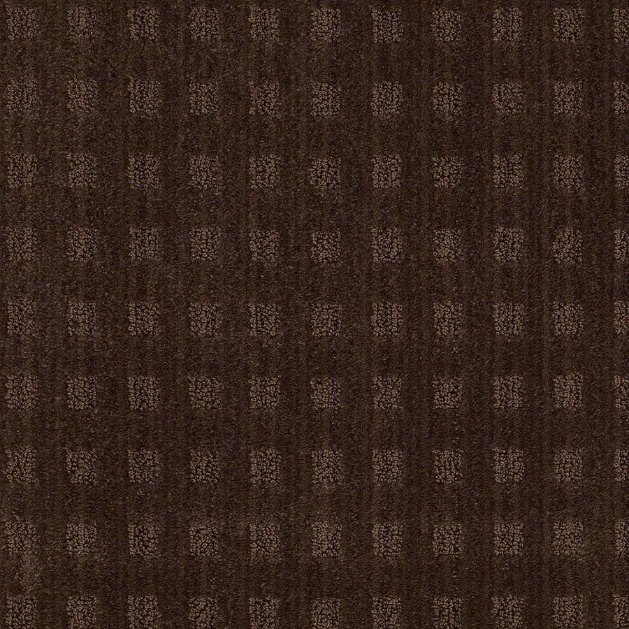 STAINMASTER Active Family Apricot Lane 12-ft W Catskill Brown Berber/Loop Interior Carpet