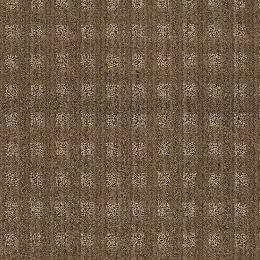STAINMASTER Active Family Apricot Lane 12-ft W Gingersnap Berber/Loop Interior Carpet