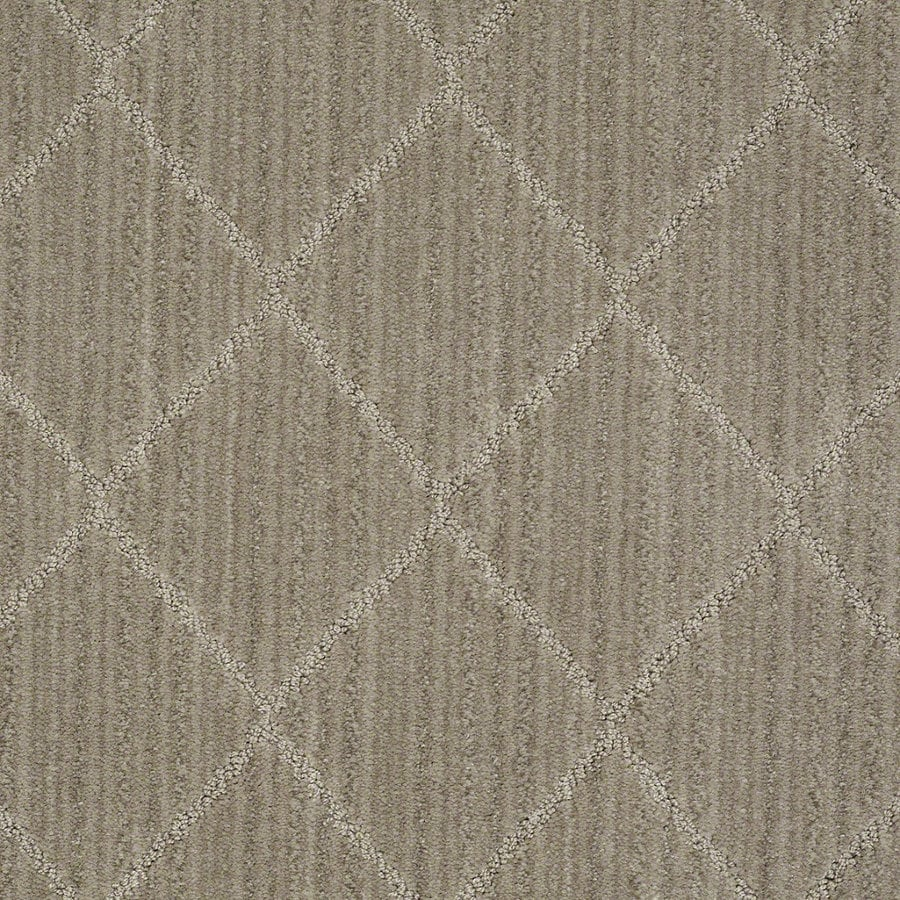 STAINMASTER Active Family Cross Creek Foggy Day Berber/Loop Interior Carpet