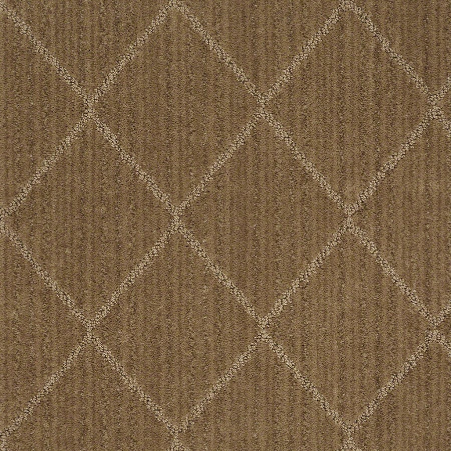 STAINMASTER Active Family Cross Creek Starfish Berber Indoor Carpet