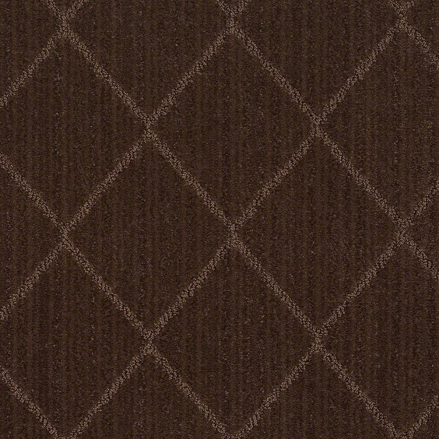 STAINMASTER Active Family Cross Creek 12-ft W Catskill Brown Berber/Loop Interior Carpet