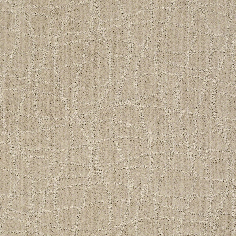 STAINMASTER Active Family Holly Springs Birch Berber/Loop Interior Carpet