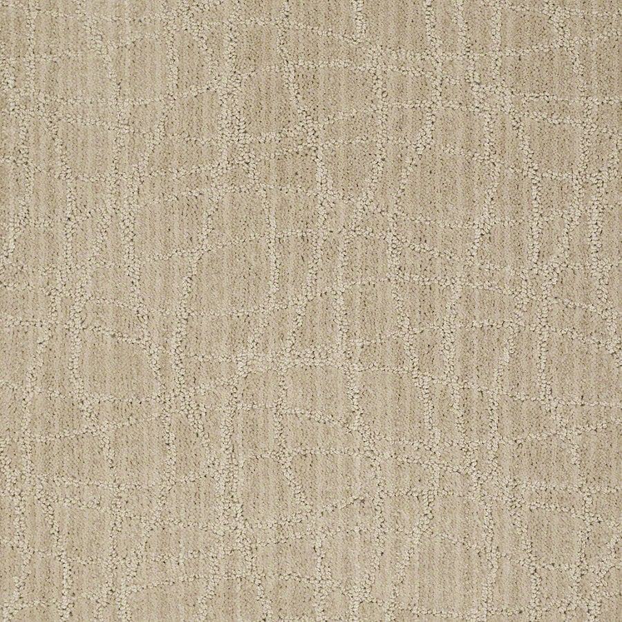STAINMASTER Active Family Holly Springs Euro Linen Berber/Loop Interior Carpet