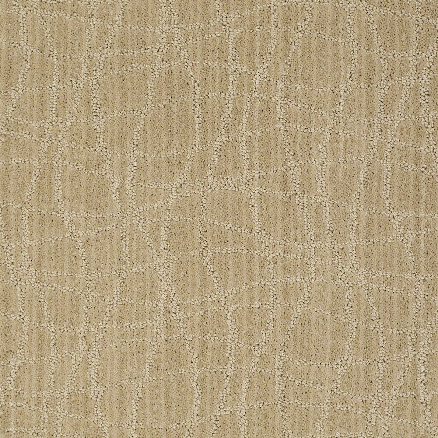 STAINMASTER Active Family Holly Springs Supernova Berber/Loop Interior Carpet
