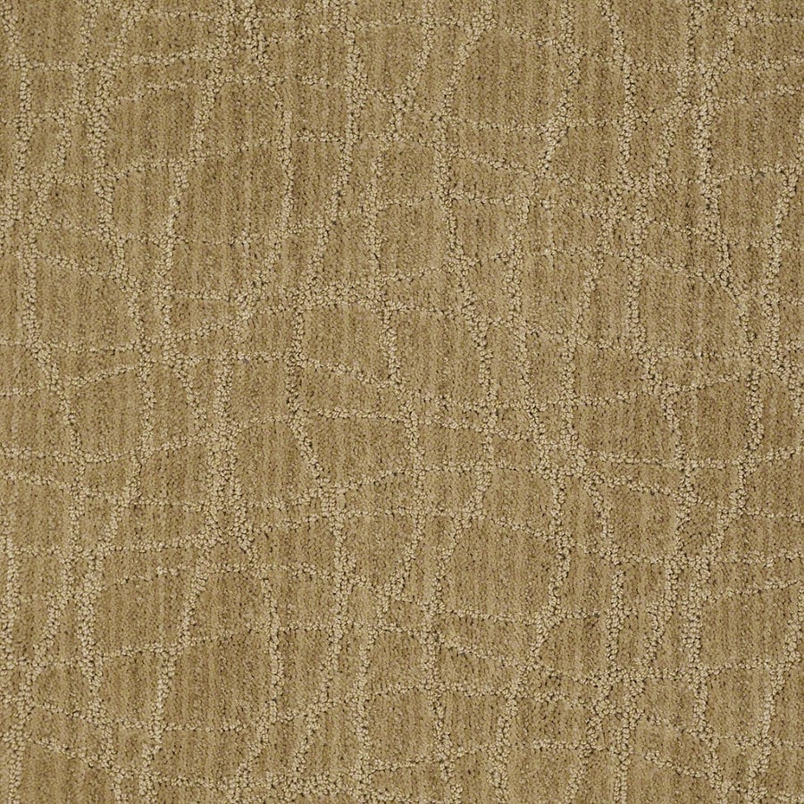 STAINMASTER Active Family Holly Springs 12-ft W Honey Grove Berber/Loop Interior Carpet