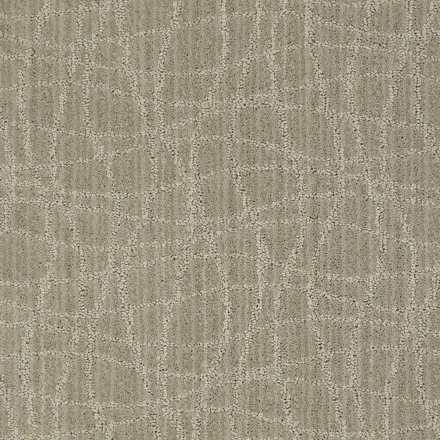 STAINMASTER Active Family Holly Springs Fossil Berber/Loop Interior Carpet