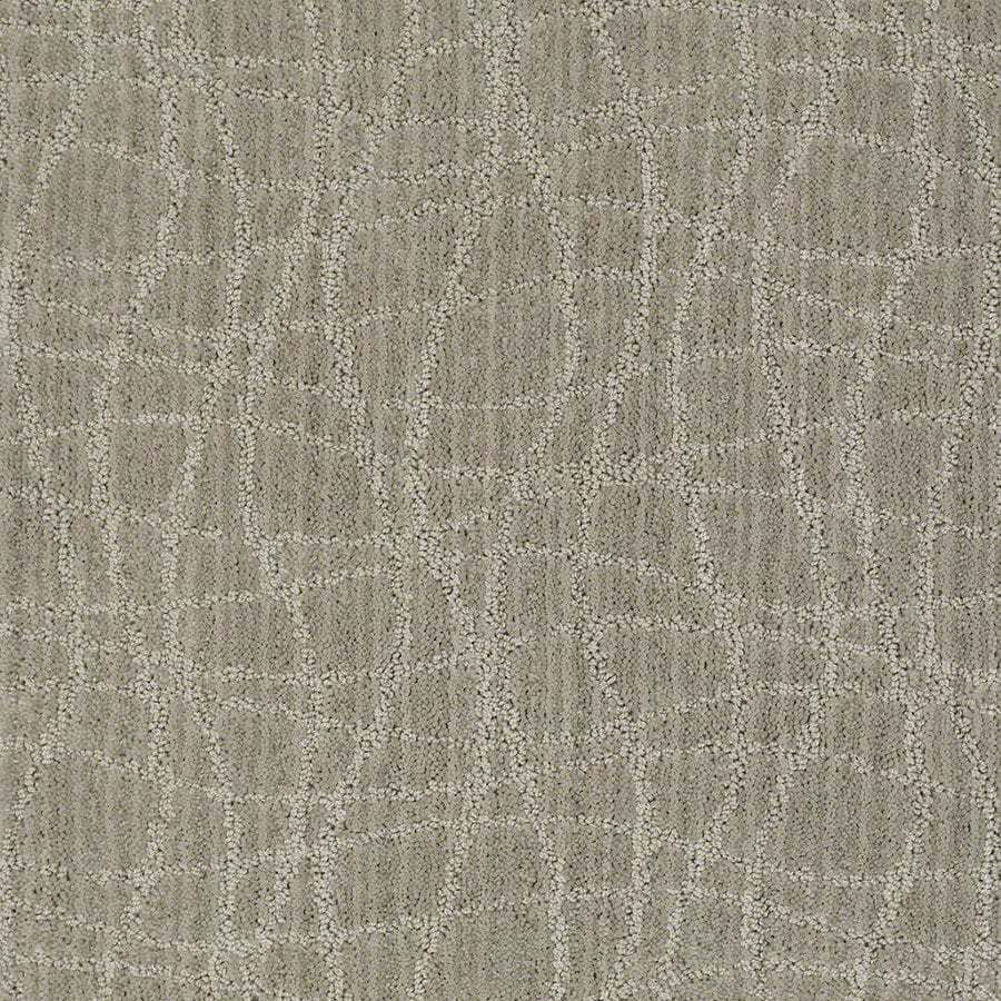 STAINMASTER Active Family Holly Springs Pelican Berber Indoor Carpet