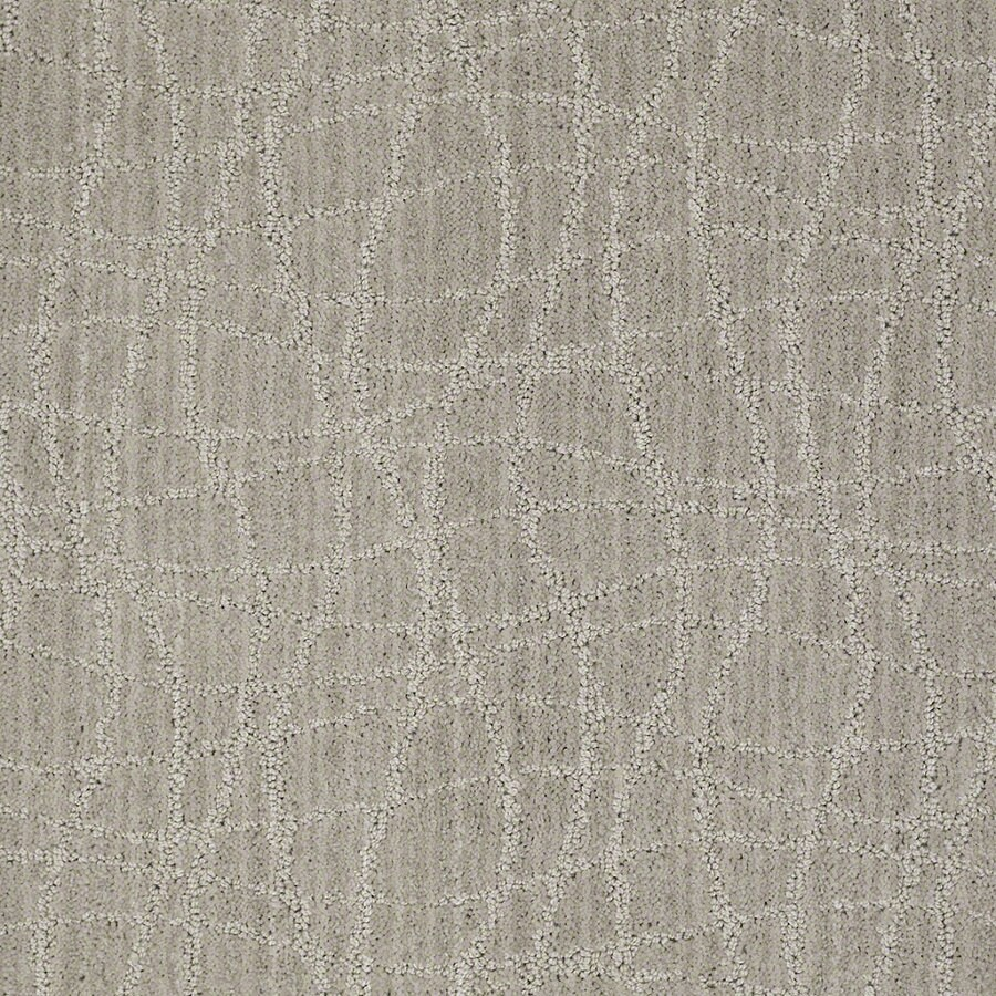 STAINMASTER Active Family Holly Springs 12-ft W Ash Gray Berber/Loop Interior Carpet