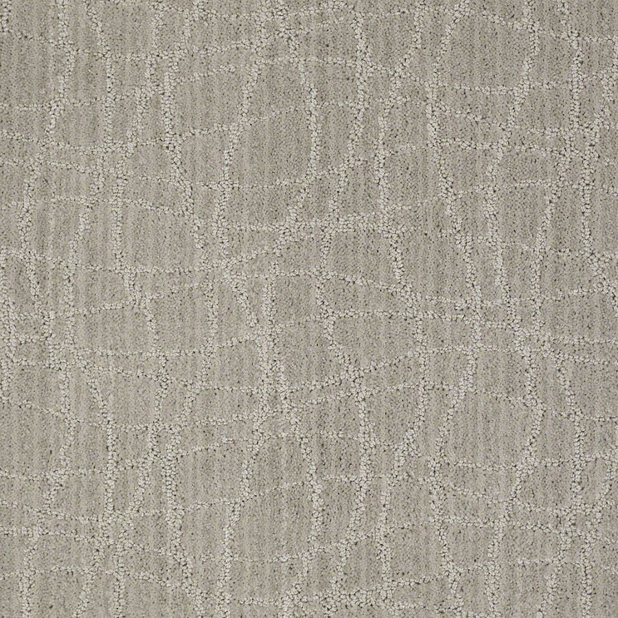STAINMASTER Active Family Holly Springs Ash Gray Berber/Loop Interior Carpet